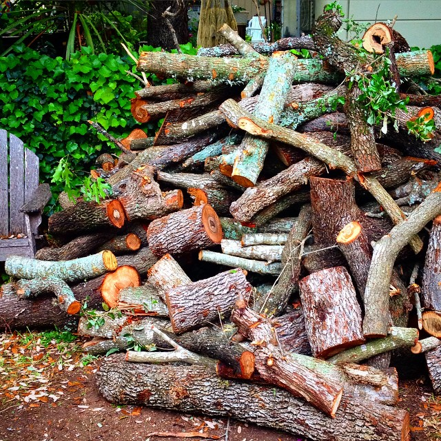 May have gotten a little carried away. #urbanlogging #gonnaneedachaisaw